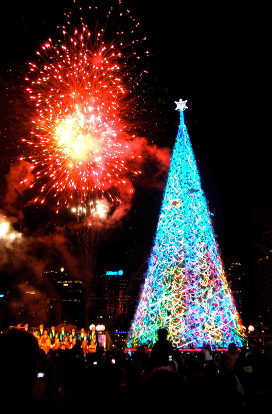 Sydney Darling Harbour Christmas tree by FOGG